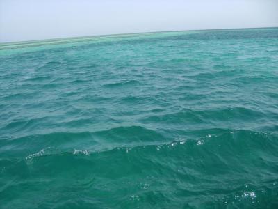море (113 kb)