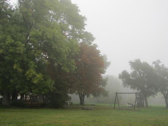 nebel (185 kb)