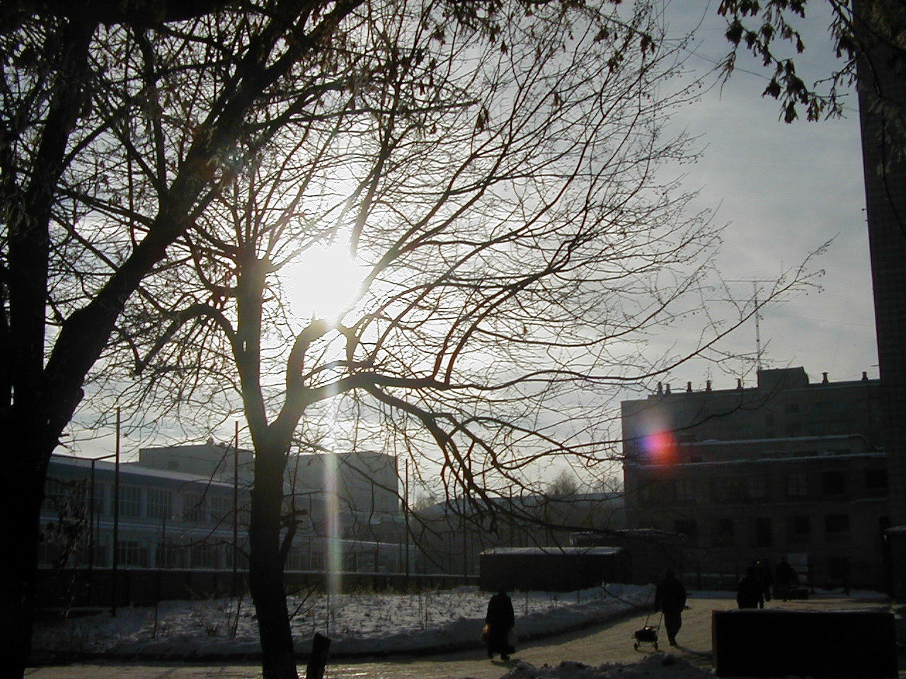 Пейзаж с солнцем (387 kb)
